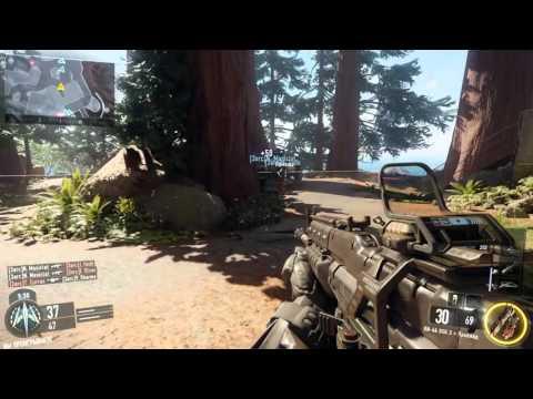 Call of Duty  Black Ops 3 мультиплеер с ботами на пиратке.