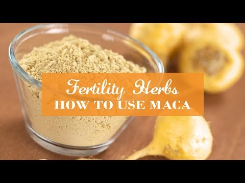 Fertility Herbs - How To Use Maca