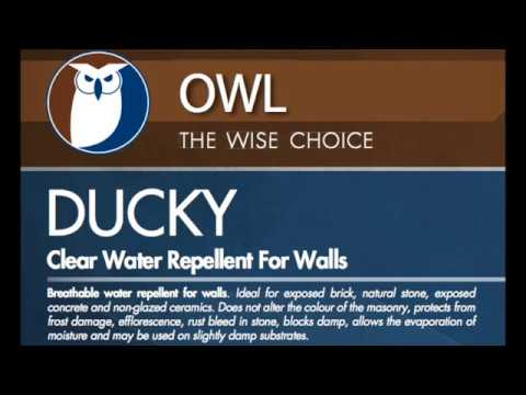 Masonry Wall Waterproofing Fast with Ducky from Owl Waterproofing