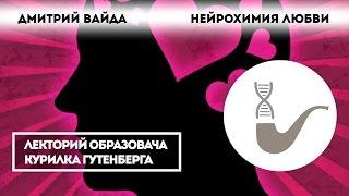 Дмитрий Вайда - Нейрохимия любви