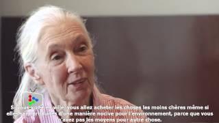 Jane Goodall : Qu'est-ce que les humains font de mal? Que pouvons-nous apprendre des chimpanzés?