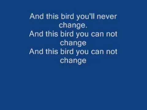 FREEBIRD(LYRICS)