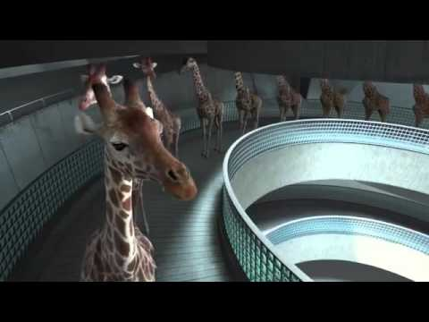 Thumbnail: High diving giraffes VIDEO funny video