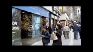 videovitrina kak eto rabotaet(Видео-витрина. бесплатная установка Вы предоставляете витражное остекление (Окна, витраж) магазина в места..., 2014-02-04T10:00:41.000Z)