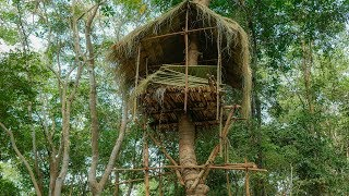 Primitive Technology, build tree house in forest, Part 02 - roof