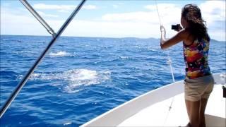 Les Baleines Rand'eau 2014- Nosy Be Madagascar - Septembre