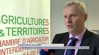 Agriculture : lutter contre l'insécurité dans les exploitations