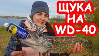 Ловля щуки на WD40 Перший трофей у дівчини