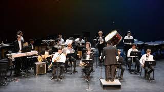 Reece RJR Jazz Band Chameleon
