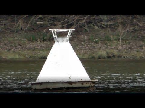 Три места на Оке за одну рыбалку