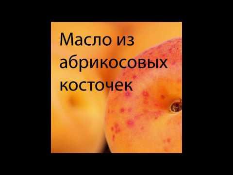 Польза масла из абрикосовых косточек I Секреты природы