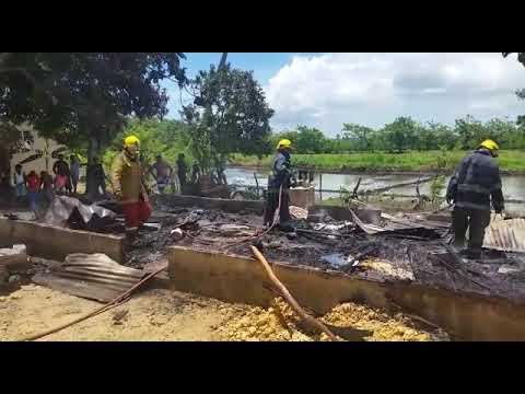 Video: Vivienda queda reducida a cenizas en la comunidad La Ceja de Nagua.