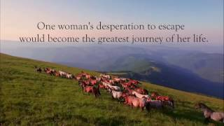 Journey to Hawk's Peak Book Trailer (MK McClintock)
