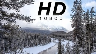 """[HD] """"Peaceful Mountain Snow"""" 1 HR  of Snowy Nature Scenes from Banff, Canadian Rockies"""
