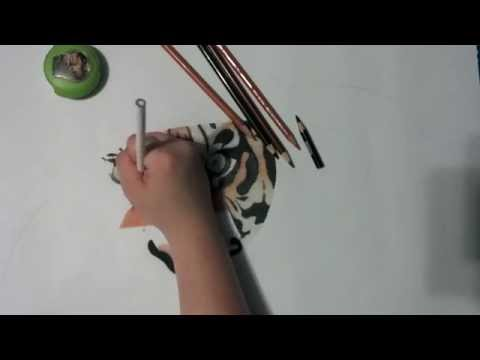 ASMR Working on a Colored Pencil Drawing Art Project [No Talking] Part #1