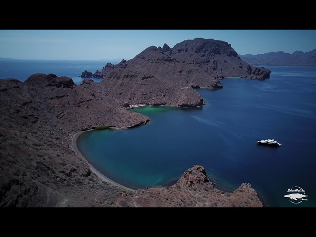 Snorkeling & Diving tours in Loreto, Baja, Mexico.