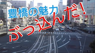 愛知県豊橋市が、めっちゃ良いところなので アピール 動画作った