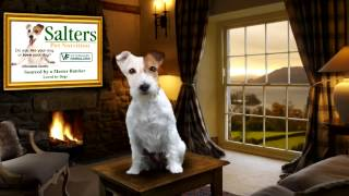 Salters Pet Food Commercial