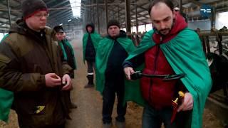 Идентификация поголовья крупного рогатого скота в Тюменской области