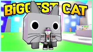 I GOT THE BIG CAT FOR FREE! Pet Simulator   Roblox (Level 10 Billion)