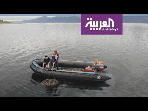 السياحة عبر العربية | صيد سلطعان البحر في أقصى جنوب الكرة الارضيّة / اوشوايا  - نشر قبل 3 ساعة