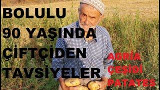 Bolu - Patates Yetiştiriciliği - Verim - Gübreleme - Toprak Hazırlığı