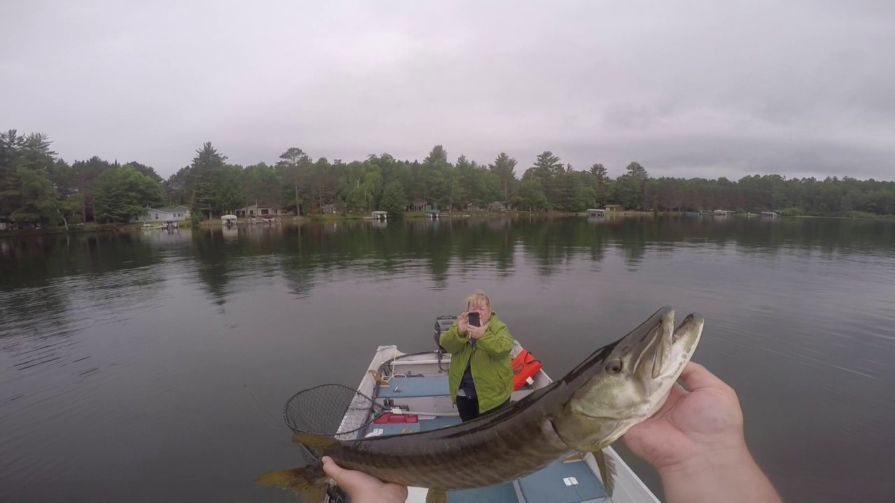 Musky fishing in vilas county pt 2 youtube for Vilas county fishing report