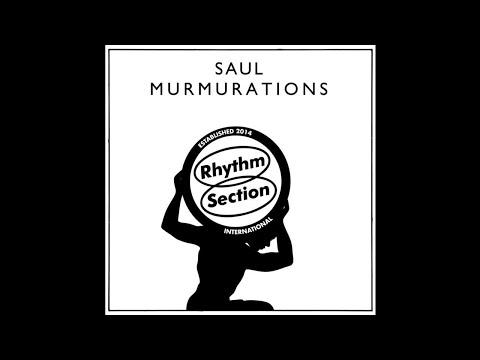 Saul - Shitbird [RS030]