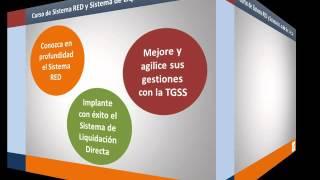 Curso de Sistema RED y Sistema de Liquidación Directa