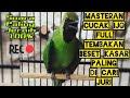 Masteran Cucak Ijo Full Tembakan Beset Kasar Paling Di Cari Juri  Mp3 - Mp4 Download