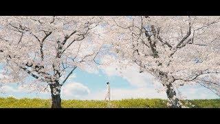 【ピュアニスト・石原可奈子「桜咲く」MUSIC VIDEO】