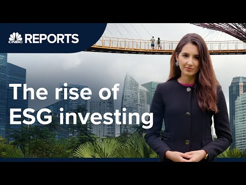 Is sustainable investing just a marketing ploy? | CNBC Reports