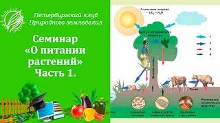 Семинар 5. О питании растений