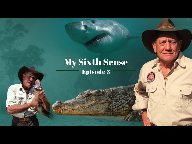 The Wildlife Man Podcast – Episode 3 - My Sixth Sense