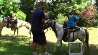 Call 815-600-6464 / Animal Rental Chicago, Farm Zoo, Petting Zoo, Animal Rental Chicagoland