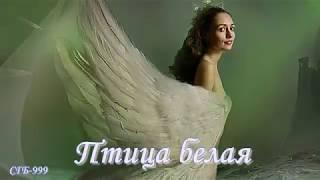 Андрей Иванцов ~ Птица белая
