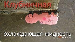 Что произойдет если смешать масло из АКПП и охлаждающую жидкость? Часть 1