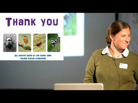 "Knepp ""Freeing the Landscape"": Vera Talks - Penny Green"