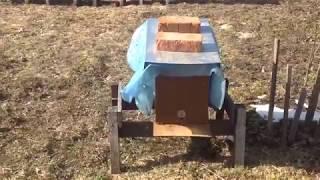 Чому мої бджоли не поносять. ( р.)