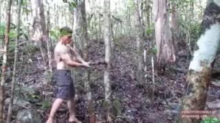 Tarzan Dunia nyata lebih kreatif dan tangguh