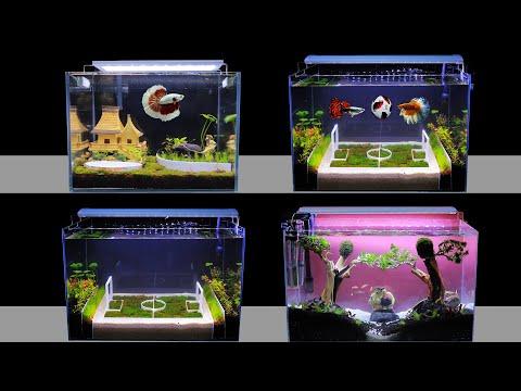 Top 3 How To Make Planted Fish Tank At Home Ideas   DIY Nano Aquascape (No Co2)