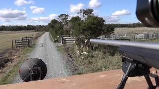 fox shooting vehicle geoff s varminator hd