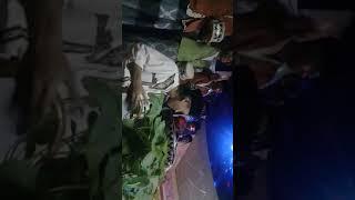 Marawis AN-NIZOM ~ An Nabi Versi Terbaru