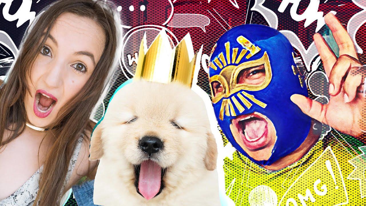 Reaction to Birthday Surprise Puppy Parties | Fiesta de Cumpleaños para Cachorros