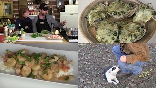 Oysters Rockefeller, Shrimp Étouffée, Training our Border Collie (Episode #405)