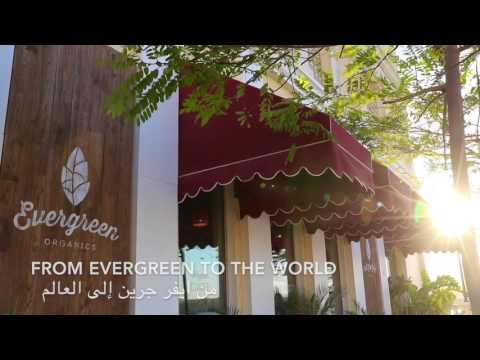 From Evergreen to the world