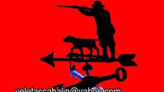 Veleta Cazador Y Su Perro, Hunter And His Dog Weathervane, Jäger Und Sein Hund  Flügelrad