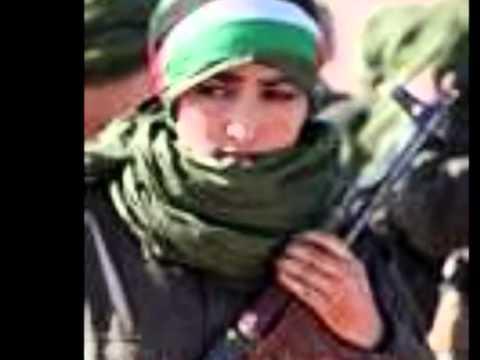 Freedom for Western Sahara - Gnarls Barkley