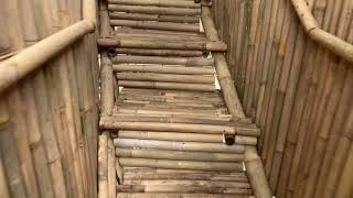 Gambar cover Penida Bambu Green Villas: the treehouse villa