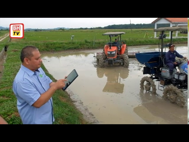 Teknologi Pertanian Padi Tepat Tingkat Pengeluaran Nasional Berita Harian